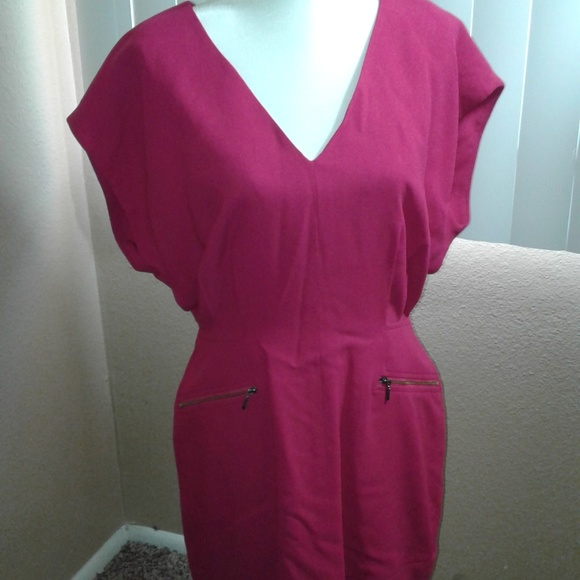 French Connection Dresses & Skirts - NWOT French Connection Hot Pink Dress SZ 10